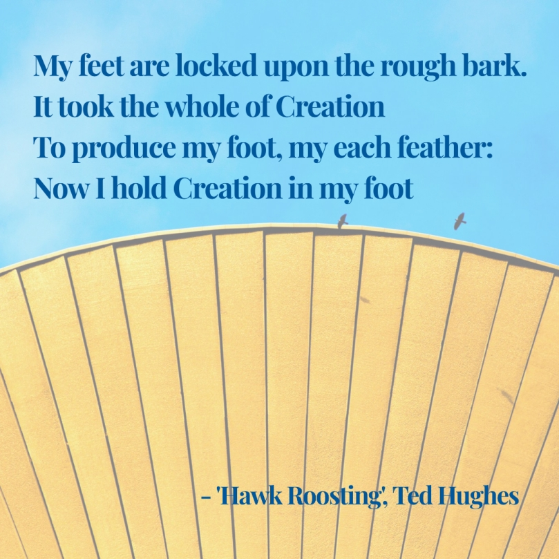 Ted Hughes Hawk Roosting quote