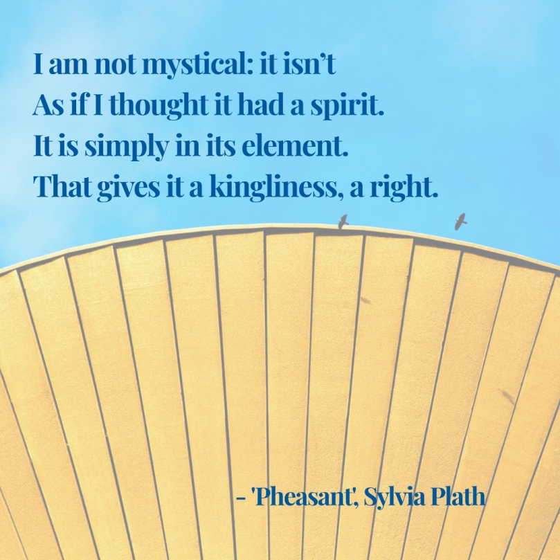 Sylvia Plath Pheasant quote